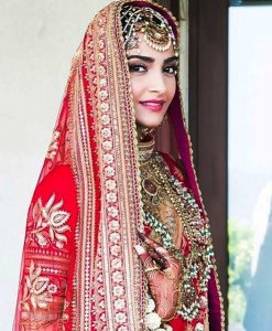 Sonam Kapoor & Anand Ahuja Wedding Pictures and Video (2)