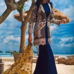 Asim Jofa Luxury Dresses Chiffon Collection 2018 (3)