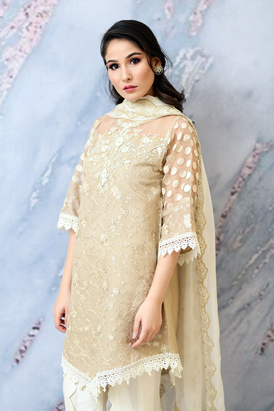 Eid with Ala Dresses Collection 2019 By Sabeen Shaban (10)