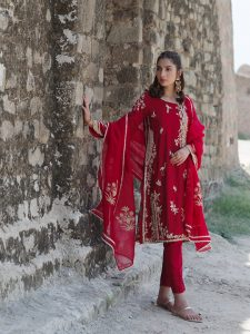 Sheesha Taanka Collection 2019 By Nida Azwer (4)