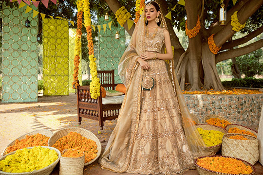 Adam And Eve Bridal Dresses Collection 2019 By Sadaf Fawad Khan (11)