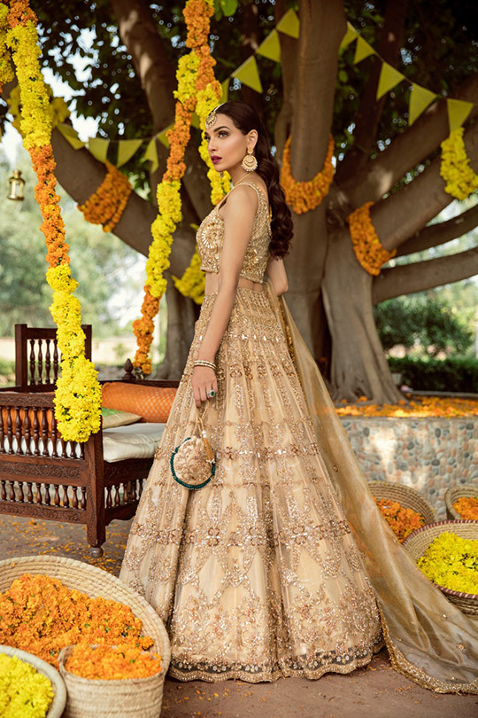 Adam And Eve Bridal Dresses Collection 2019 By Sadaf Fawad Khan (22)