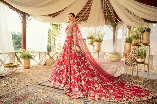Adam And Eve Bridal Dresses Collection 2019 By Sadaf Fawad Khan (7)