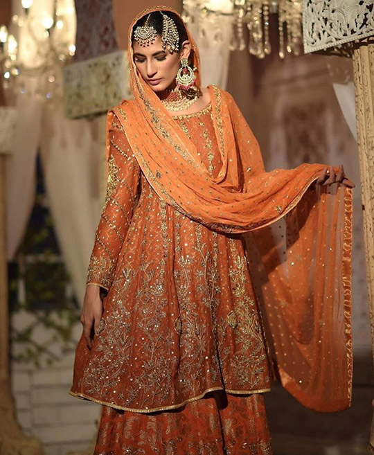 Ansab Jahangir Bridal Embroidered Dresses Collection Ranya 2019 (8)
