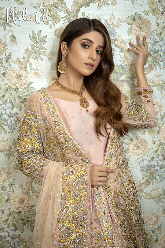 Dreamy Bridals Wear Collection 2019 By Nida Ali (11)