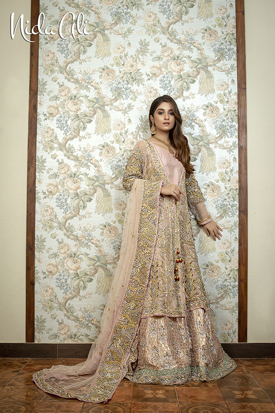 Dreamy Bridals Wear Collection 2019 By Nida Ali (14)