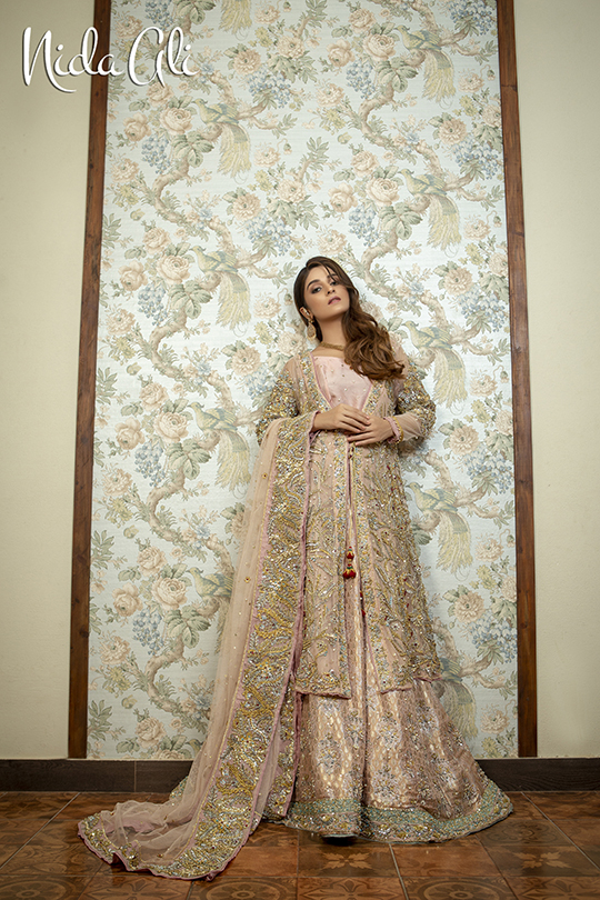 Dreamy Bridals Wear Collection 2019 By Nida Ali (15)
