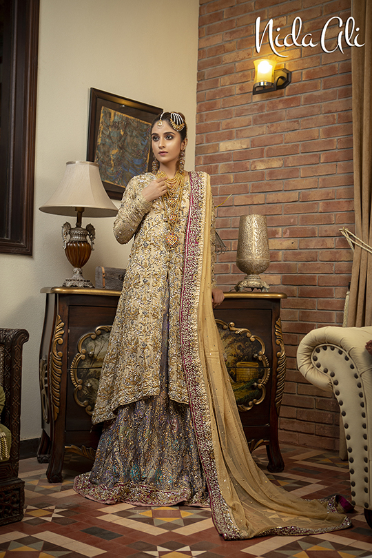 Dreamy Bridals Wear Collection 2019 By Nida Ali (16)
