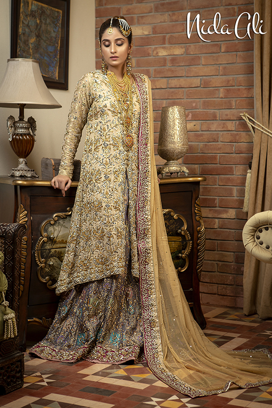 Dreamy Bridals Wear Collection 2019 By Nida Ali (17)