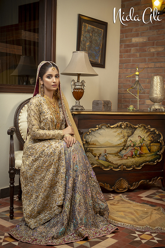 Dreamy Bridals Wear Collection 2019 By Nida Ali (18)