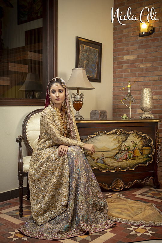 Dreamy Bridals Wear Collection 2019 By Nida Ali (19)