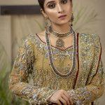 Dreamy Bridals Wear Collection 2019 By Nida Ali (24)