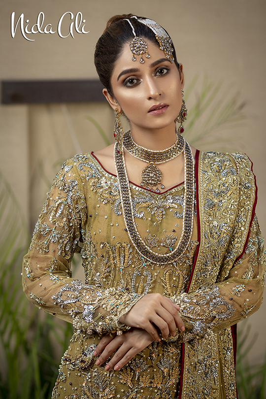 Dreamy Bridals Wear Collection 2019 By Nida Ali (24)