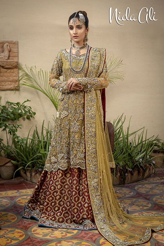 Dreamy Bridals Wear Collection 2019 By Nida Ali (25)