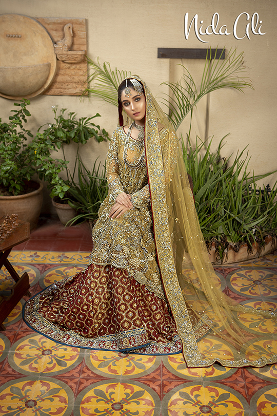 Dreamy Bridals Wear Collection 2019 By Nida Ali (26)