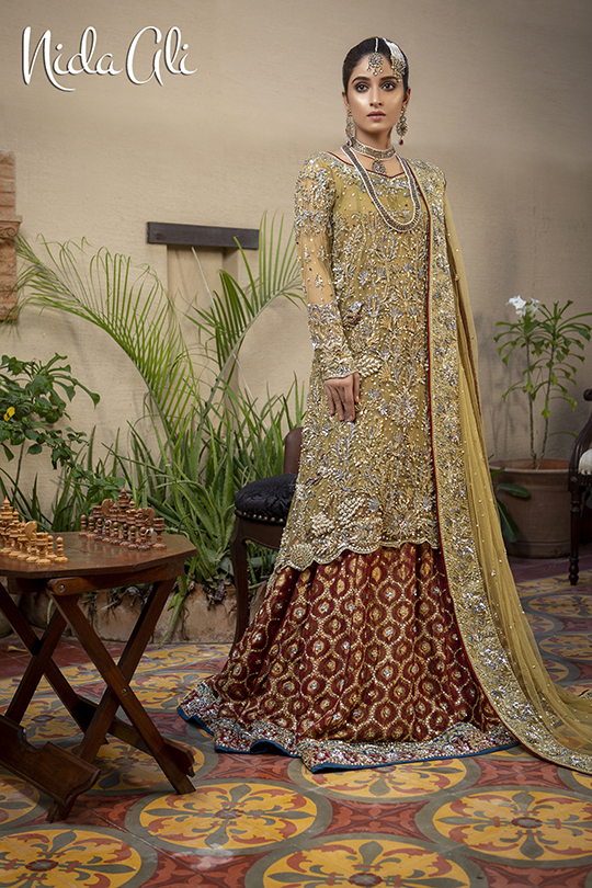 Dreamy Bridals Wear Collection 2019 By Nida Ali (4)