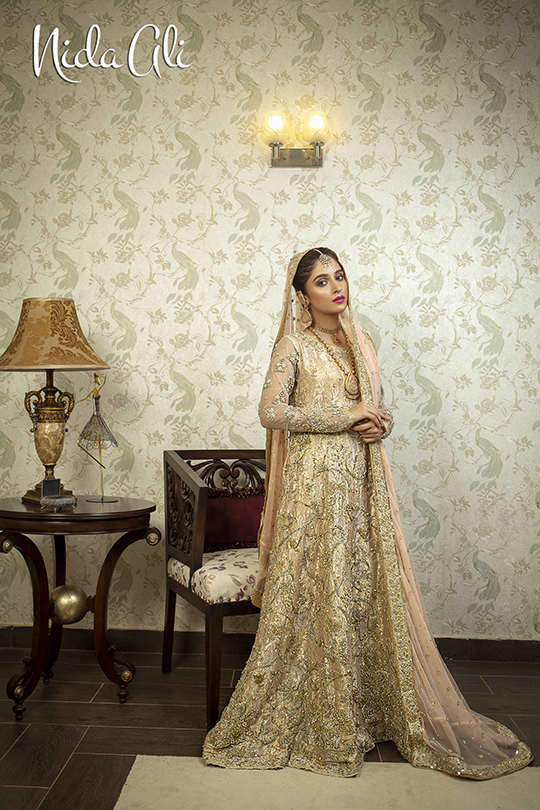 Dreamy Bridals Wear Collection 2019 By Nida Ali (9)