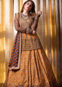 Bridal and Formal Luxury Wear Collection 2020 By HSY (14)