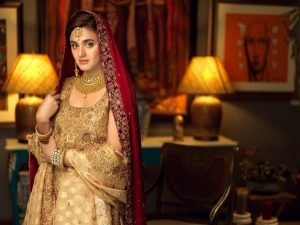 Hira Mani Pakistani Actress Latest Bridal Photo Shoot 2020 (3)