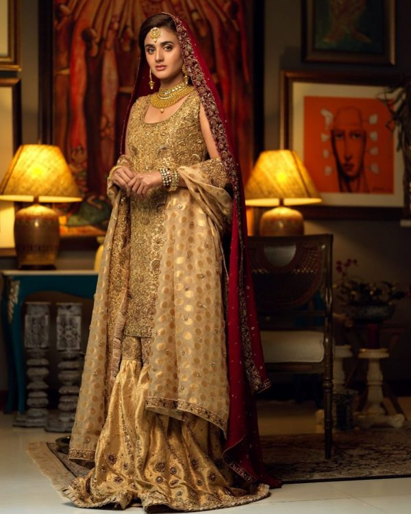 Hira Mani Pakistani Actress Latest Bridal Photo Shoot 2020 (7)