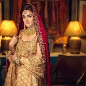 Hira Mani Pakistani Actress Latest Bridal Photo Shoot 2020 (9)