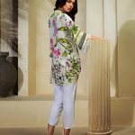 Luxury Silk Wear Collection 2018 by Farida Hasan (13)