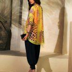 Luxury Silk Wear Collection 2018 by Farida Hasan (5)