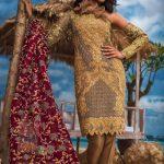 Asim Jofa Luxury Dresses Chiffon Collection 2018 (4)