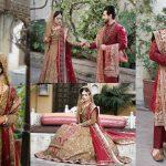 Saba Faisal's Son Salman Faisal Wedding Images (2)
