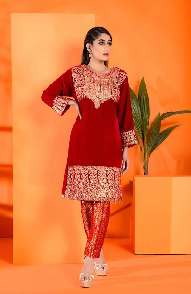 Velvet Embroidered Winter Wear Collection 2019-20 By Al-Zohaib (12)